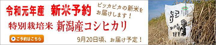 【新米予約販売】令和元年産 特別栽培米 新潟産コシヒカリ