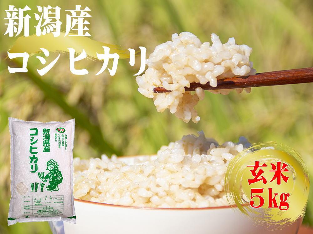 農家産直コシヒカリの玄米 通販