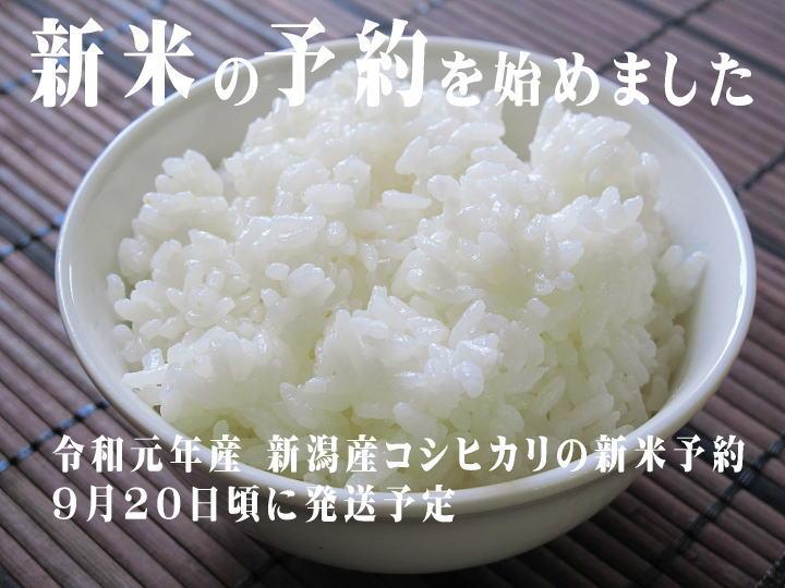 新米!平成30年産 新潟産コシヒカリ 販売予約